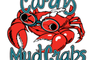 mudcrabs-masters-swimming-club-cairns